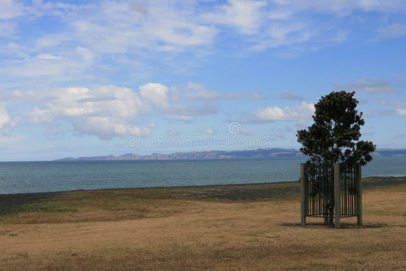 Napier plaża zdjęcie royalty free