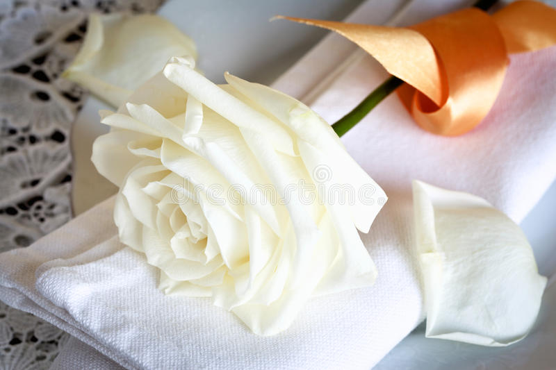 Download Napkin with a Rose stock image. Image of setting, lace - 22685939