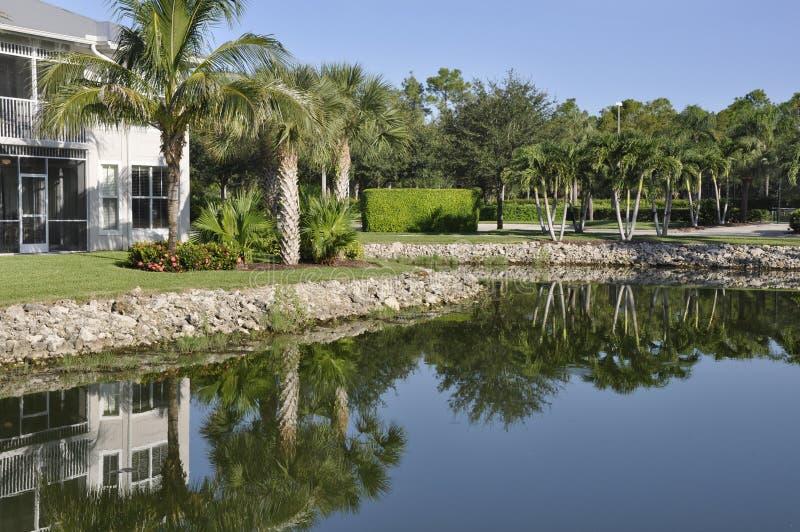 Naples Florida resort royalty free stock image