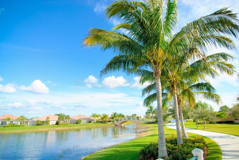 Download Naples neighborhood stock image. Image of residential - 12816913