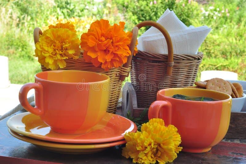 napoje bawją się relaksującej herbacianej kobiety zdjęcia stock