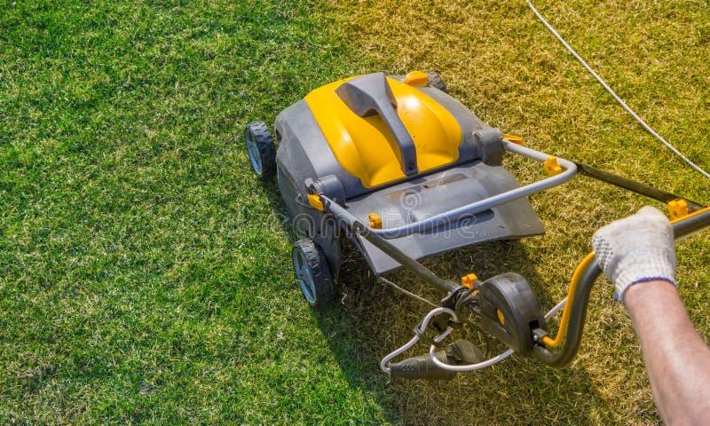 Napowietrzenie gazon w ogródzie Żółty przewietrznik na zielonej trawie zdjęcia stock