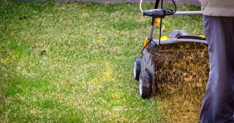 Napowietrzenie gazon w ogródzie Żółty przewietrznik na zielonej trawie zdjęcie royalty free