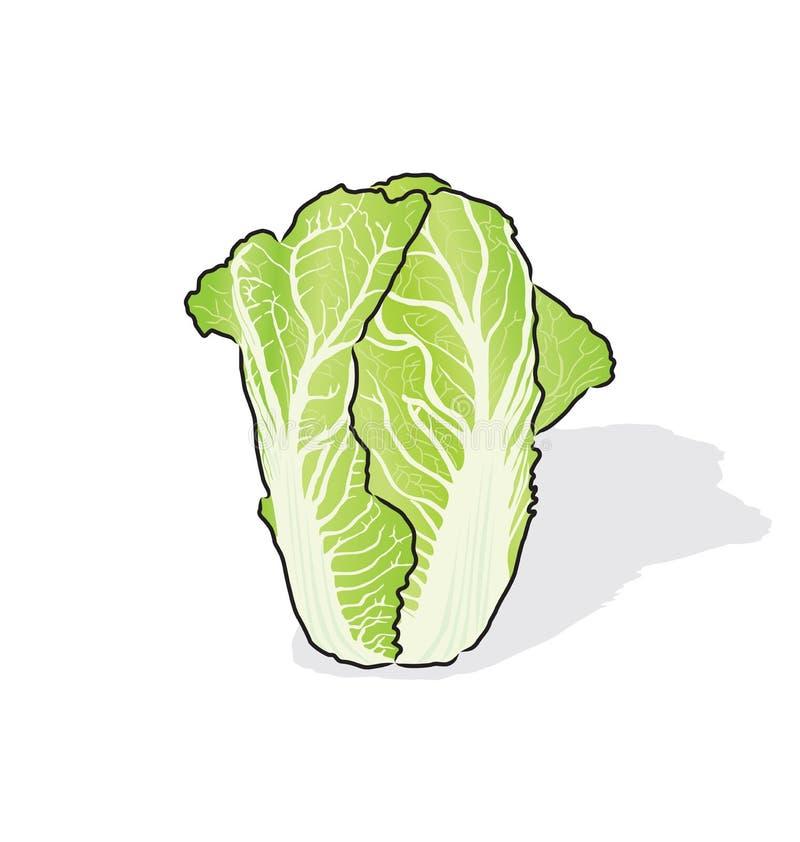 Nappakool stock illustratie