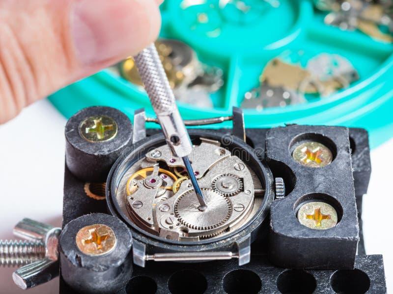 Naprawianie wristwatch w właścicielu z śrubokrętem zdjęcia stock