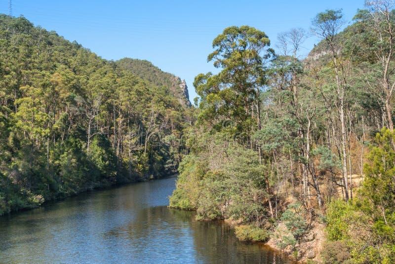 Naprz?d rzeka w Tasmania obrazy stock