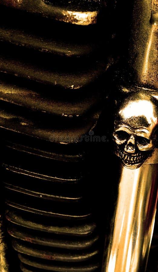 Napy Harley Dolinna czaszka fotografia royalty free