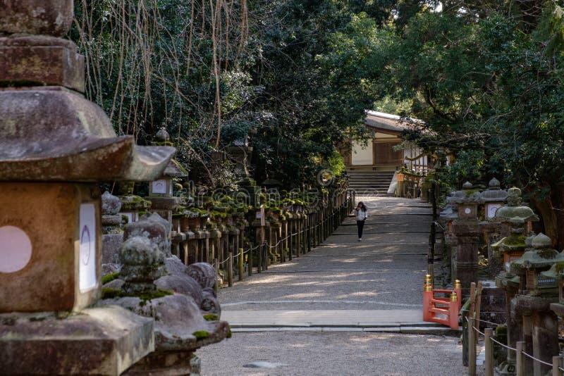 NARA, GIAPPONE - 30 GENNAIO 2018: Donna che cammina sul santuario di Kasuga a Nara che guarda le lanterne immagini stock libere da diritti