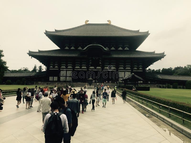 Nara Japan royaltyfri foto