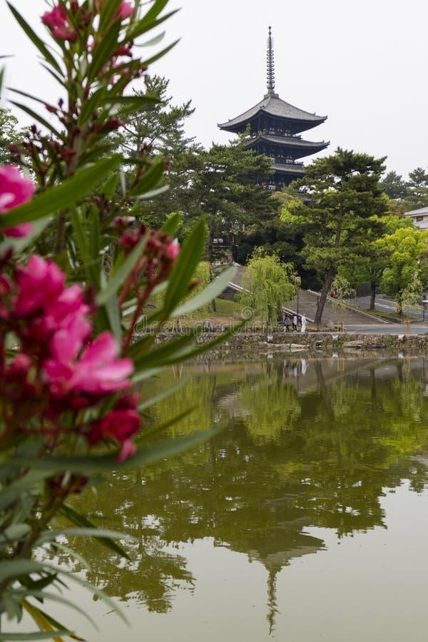 Nara, Japan - May 30, 2017: View of the Five Storied Pagoda of royalty free stock photos