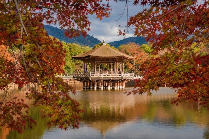 Nara Park in de Herfst royalty-vrije stock foto