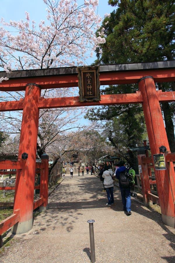 Free Nara Park,Japan Stock Image - 43068861