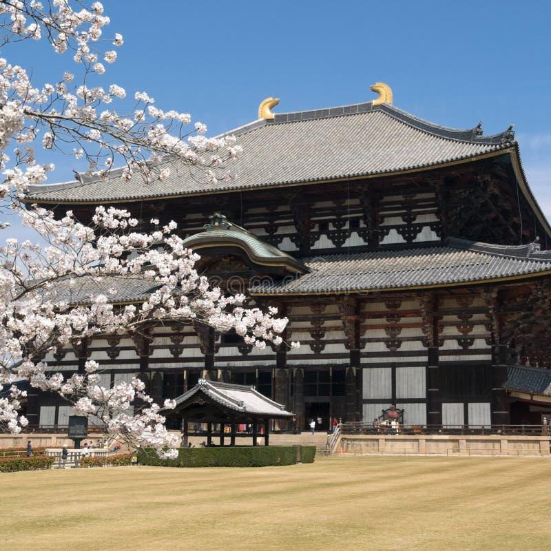 Free Nara Todaiji Temple Stock Photography - 5724752