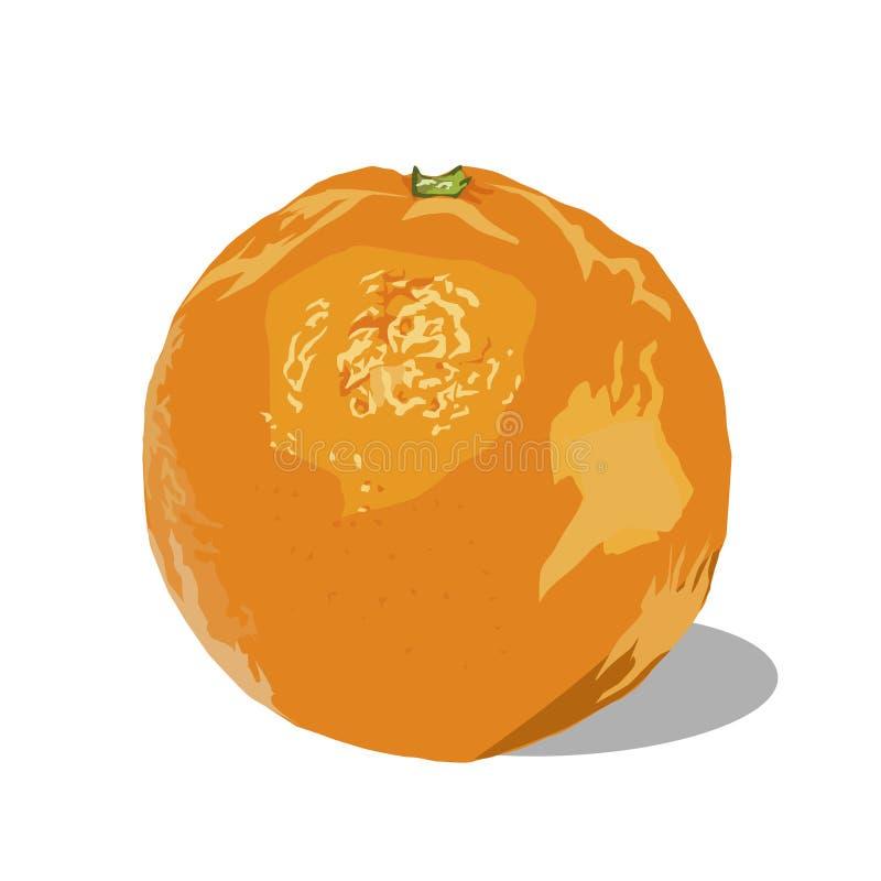 Naranja con imagen del vector de la sombra stock de ilustración