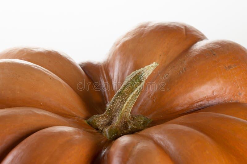 Naranja de la cosecha del fondo de Halloween de la calabaza, estacional fotografía de archivo libre de regalías