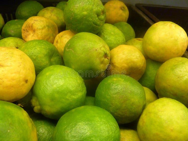 Naranja de Nagpur, mandarina foto de archivo libre de regalías
