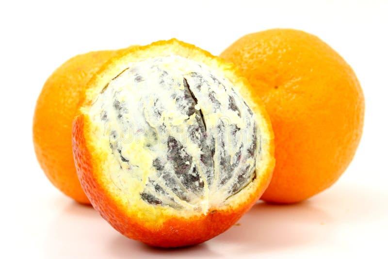 Naranja De Sangre Fotografía de archivo