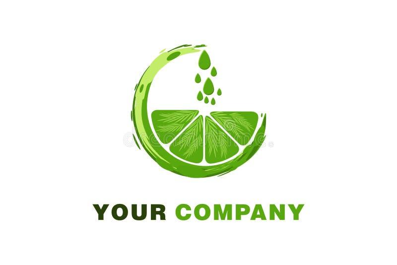 naranja verde, descenso del agua, Juice Logo Designs Inspiration Isolated en el fondo blanco stock de ilustración