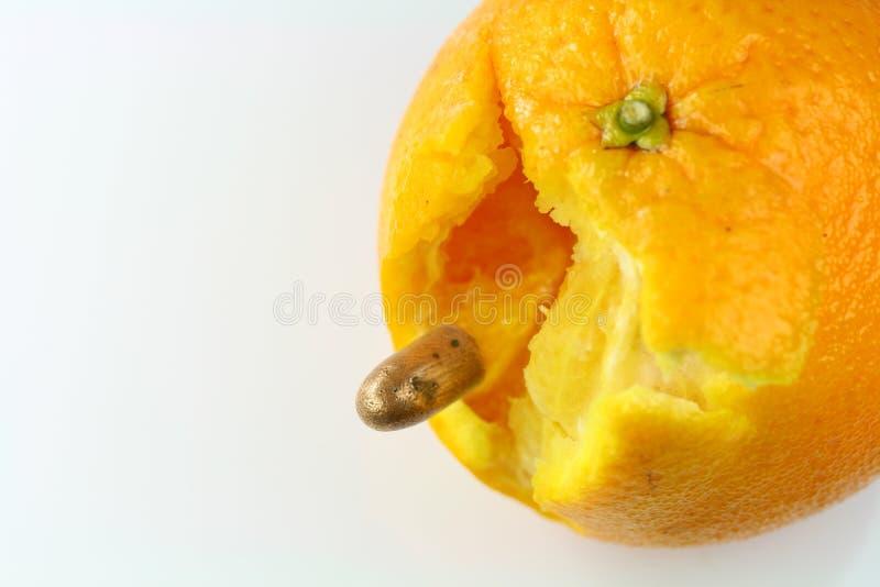 Naranja y punto negro imagen de archivo libre de regalías
