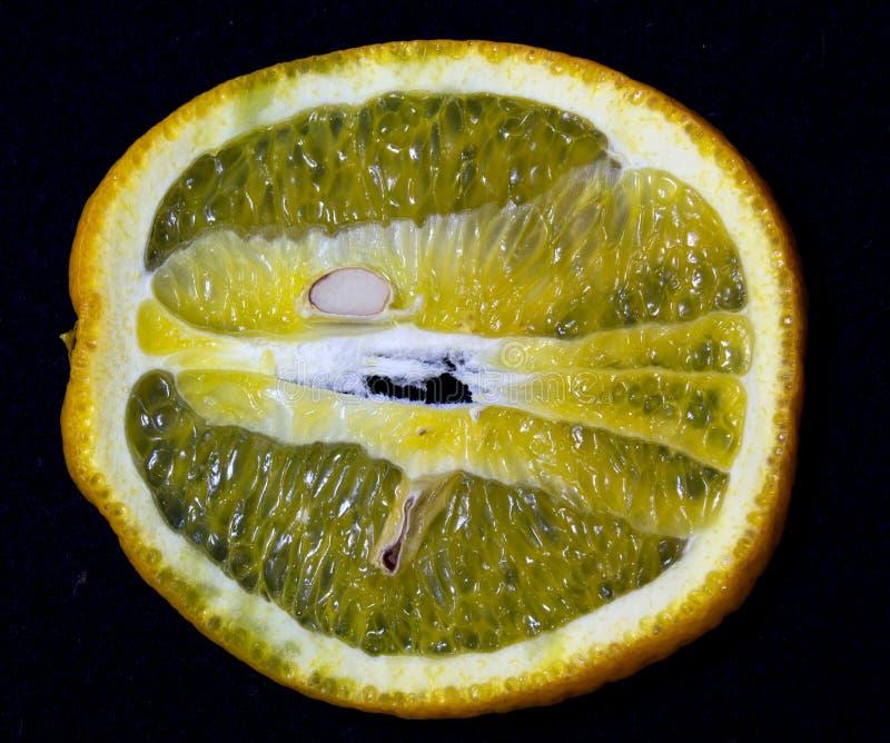 Naranjas en un fondo negro foto de archivo