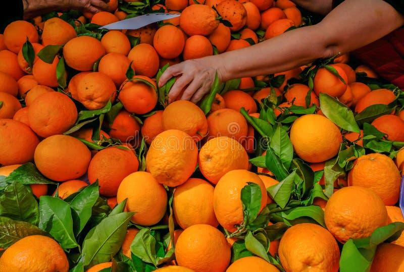 Naranjas en venta en una parada del mercado, con un brazo y una mano alcanzando adentro para escoger una naranja bien escogida imagen de archivo