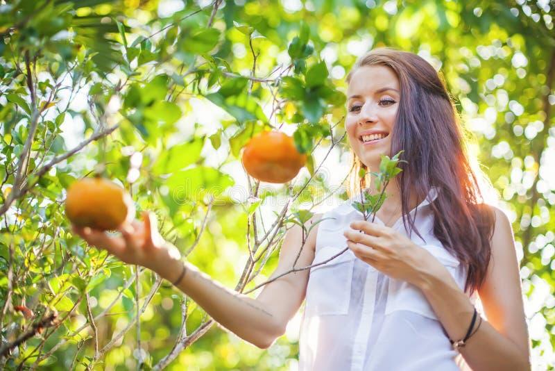 Naranjas hermosas jovenes de la cosecha de la mujer imágenes de archivo libres de regalías