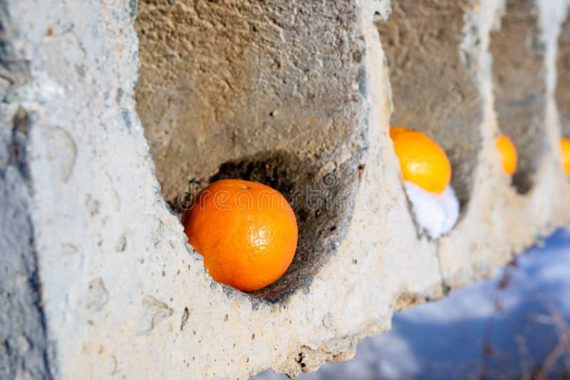 Naranjas que mienten en los agujeros concretos, abstracción fotos de archivo