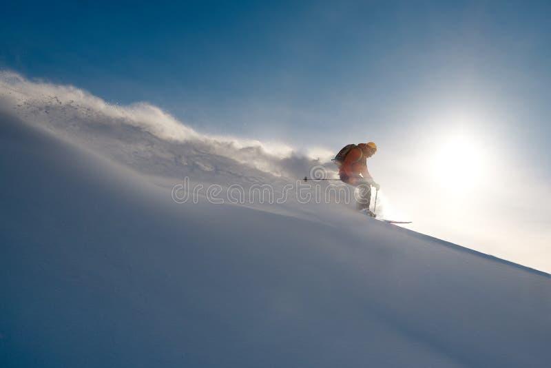 Narciarek przejażdżek freeride na proszku śnieżna opuszcza fala obraz royalty free