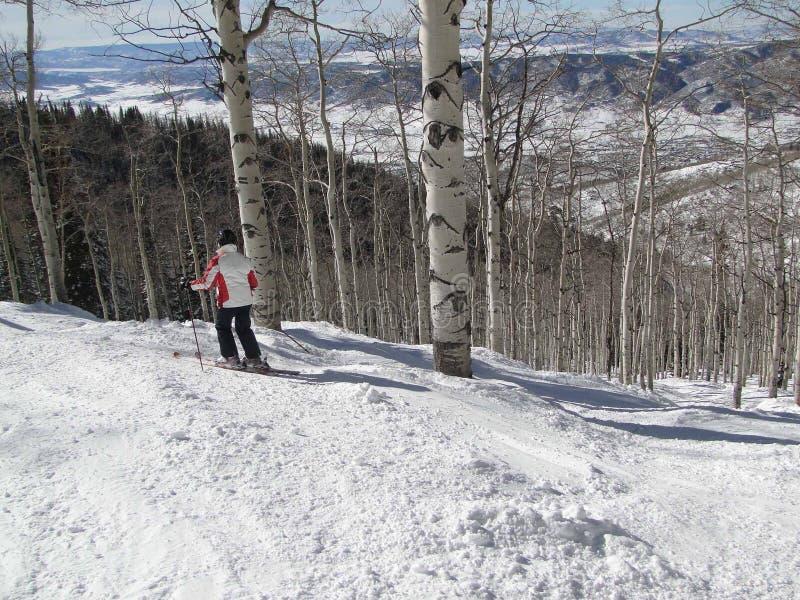 narciarka jej samotny sposób wyplata obraz stock