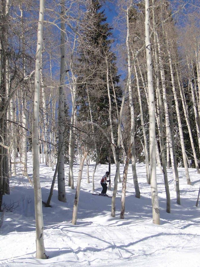 narciarka jej samotny sposób wyplata obrazy stock
