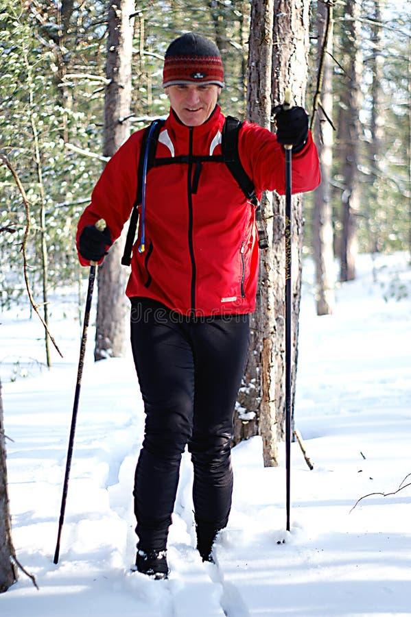 narciarka prowincji fotografia royalty free