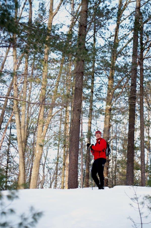 narciarka prowincji fotografia stock