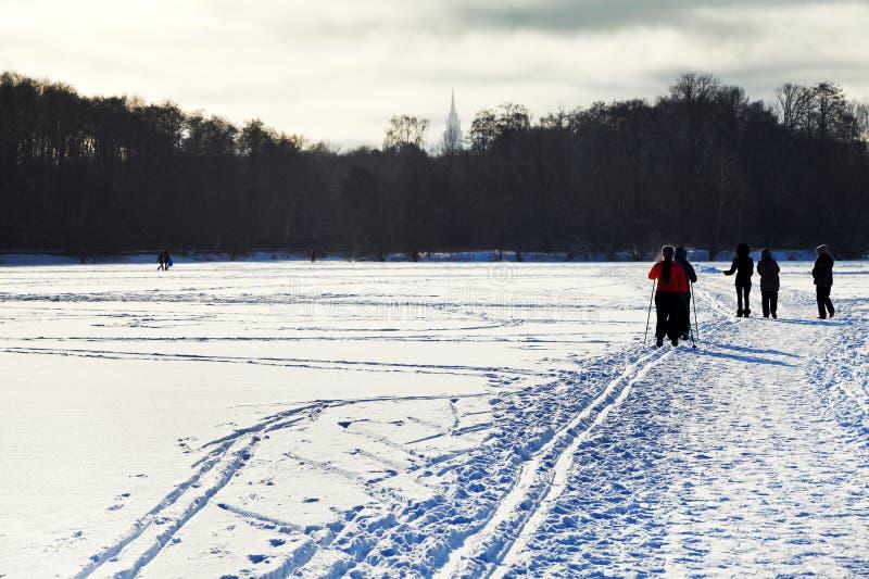Narciarki i odprowadzeń ludzie na śnieżnym polu fotografia stock
