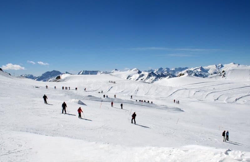 Narciarki na Alpejskim narciarskim skłonie zdjęcie royalty free