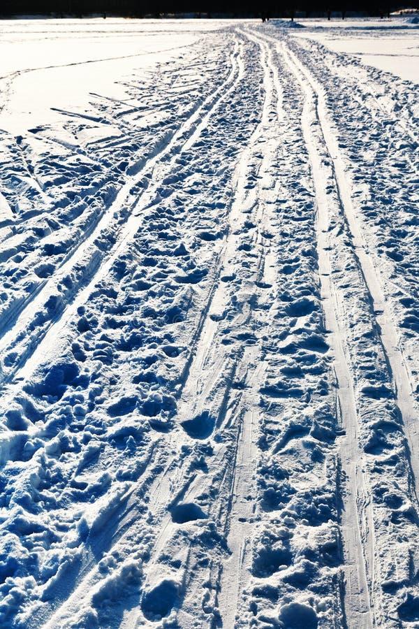 Narciarscy bieg w śnieżnym polu w zima dniu zdjęcia royalty free