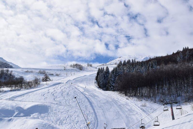 Narciarscy skłony i narciarki fotografia royalty free