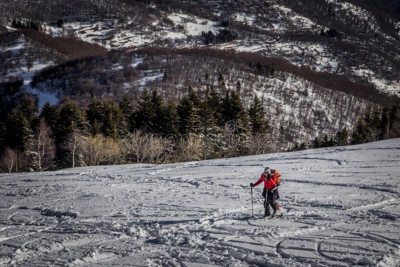 Narciarski mountaineering obraz stock