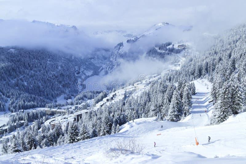 Narciarstwo przez wysokogórskiego lasu w Francuskim zima sporta kurorcie obraz royalty free
