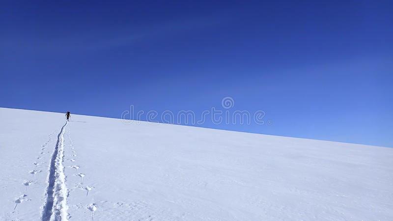 Narciarstwo up góra Gordon zdjęcie royalty free