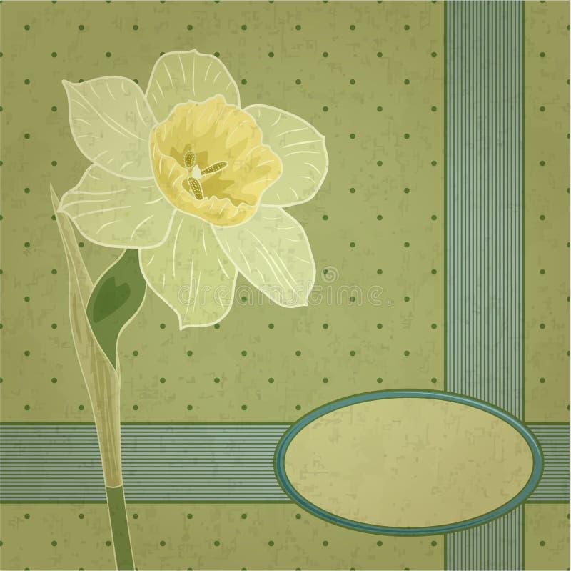 Narciso retro libre illustration