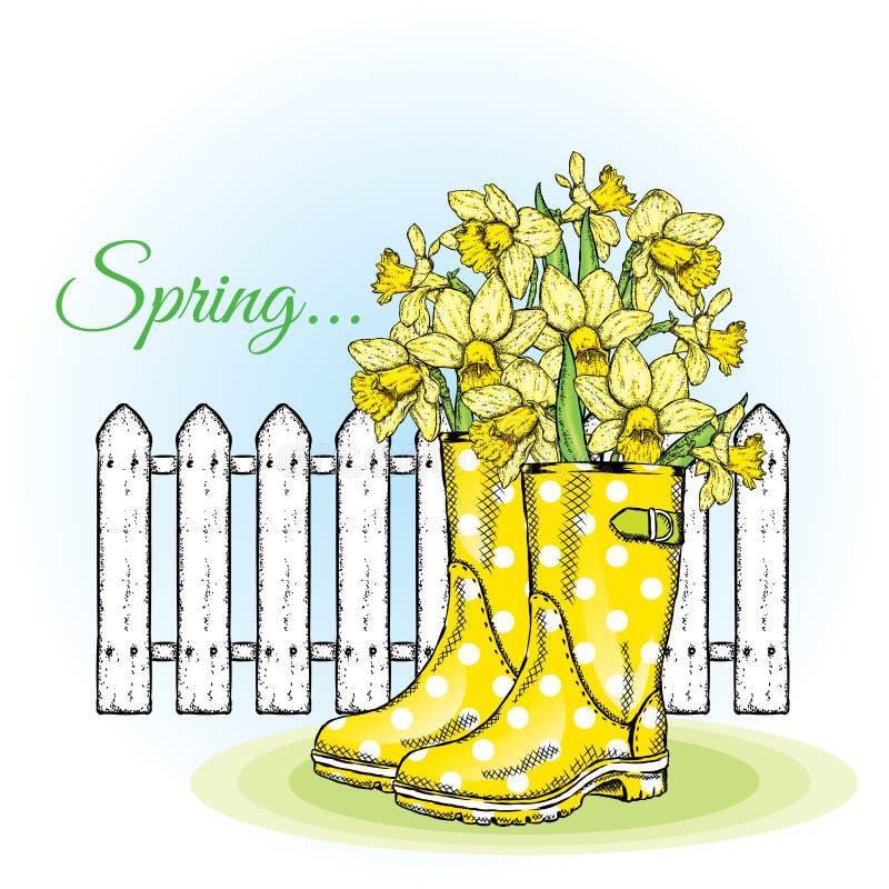Narcisos amarelos bonitos nas botas de borracha Composição da mola contra uma cerca branca Ilustração do vetor Flores do jardim ilustração stock