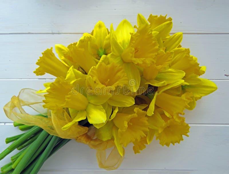 Narcisos de la primavera fotografía de archivo libre de regalías