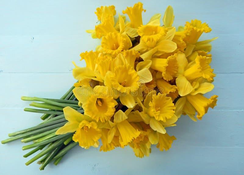 Narcisos de la primavera imagenes de archivo