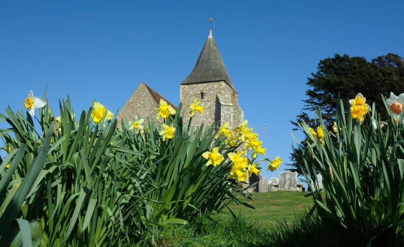 Narcisos en St Clement Church Romney viejo, Kent, Reino Unido imagen de archivo libre de regalías