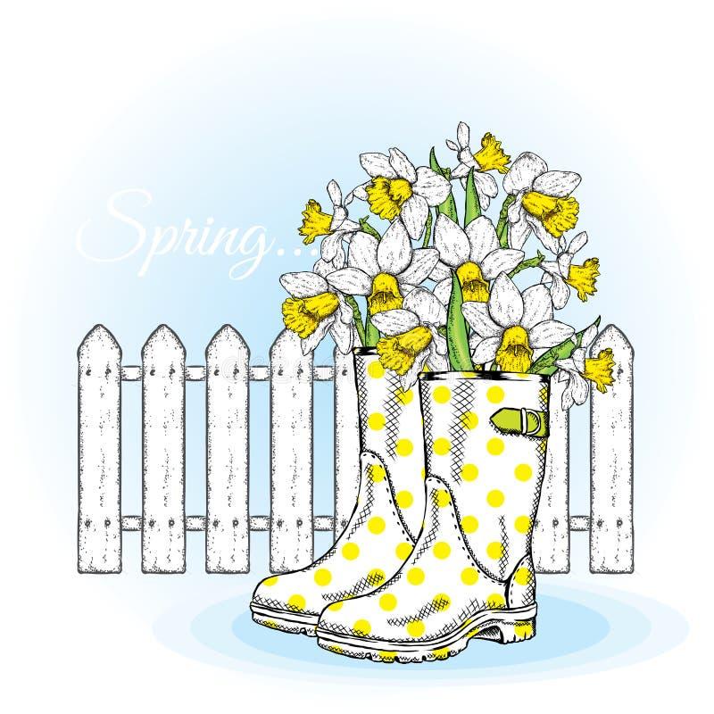 Narcisos hermosos en las botas de goma Composición de la primavera contra una cerca blanca Ilustración del vector Flores del jard ilustración del vector