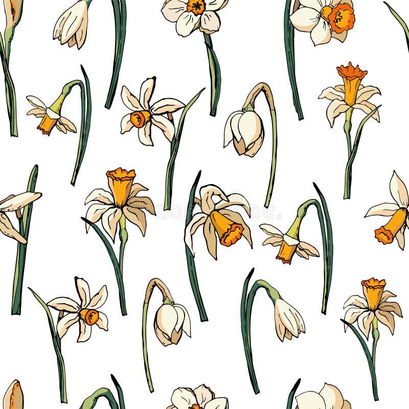 Narcisse floral de petit morceau d'illustration de vecteur illustration stock
