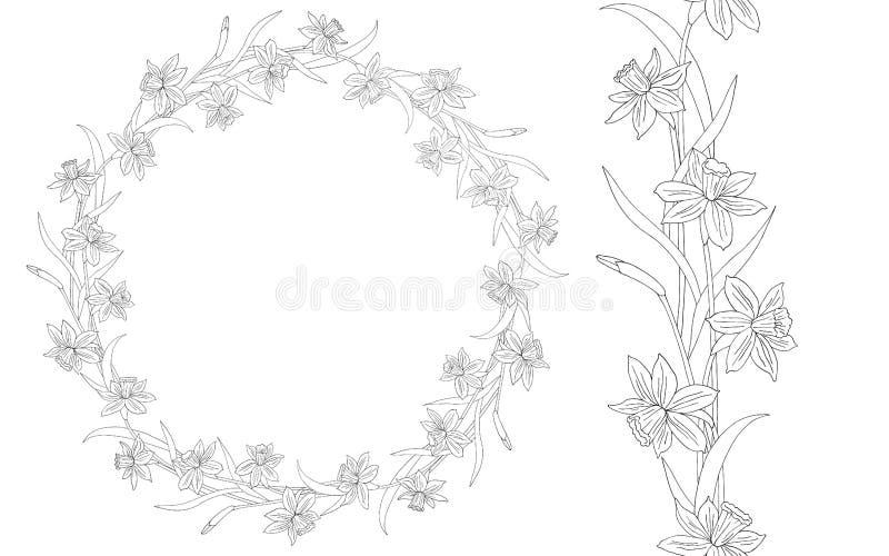 Narcissus или daffodils Нарисованная рукой иллюстрация вектора флористическая рамка круглая Линия искусство Безшовные граница или бесплатная иллюстрация