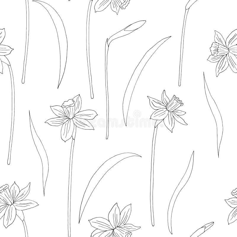 Narcissus или daffodils также вектор иллюстрации притяжки corel картина безшовная Иллюстрация чернил руки вычерченная в линии сти иллюстрация вектора