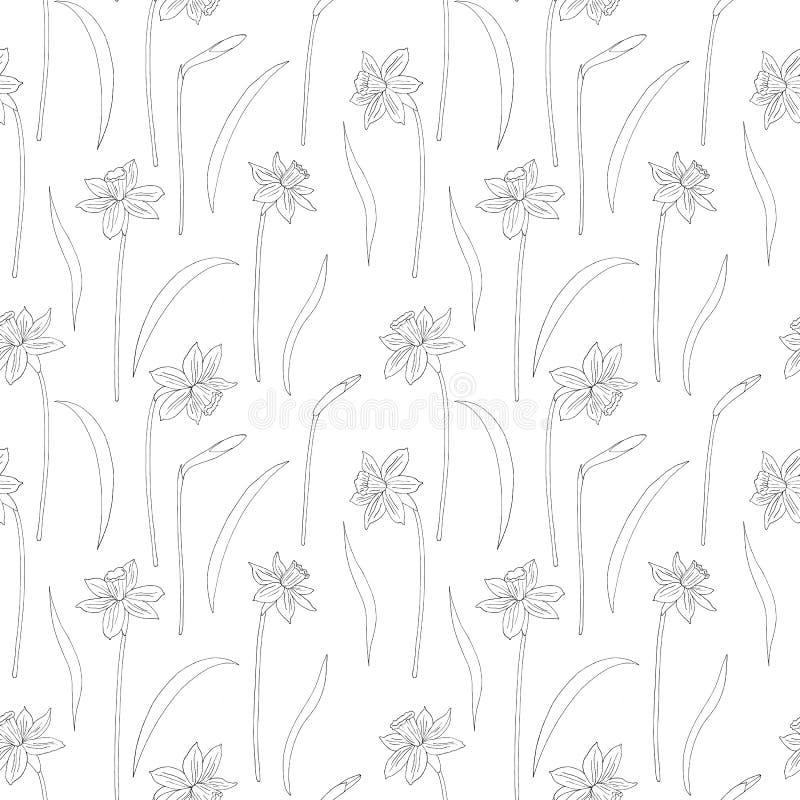Narcissus или daffodils также вектор иллюстрации притяжки corel картина безшовная Иллюстрация чернил руки вычерченная в линии сти иллюстрация штока