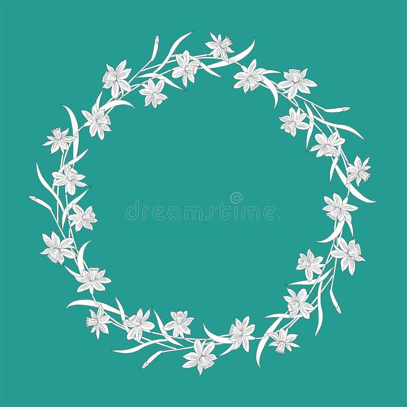Narcissus или daffodils также вектор иллюстрации притяжки corel флористическая рамка круглая Цветки весны на бирюзе иллюстрация штока